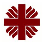 Area Caritas nel sito